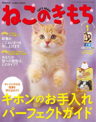 img_cat_cover.jpg